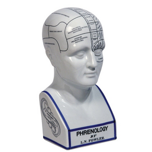 Authentic Models Phrenology Head - Talisman Collection Fine Jewelers