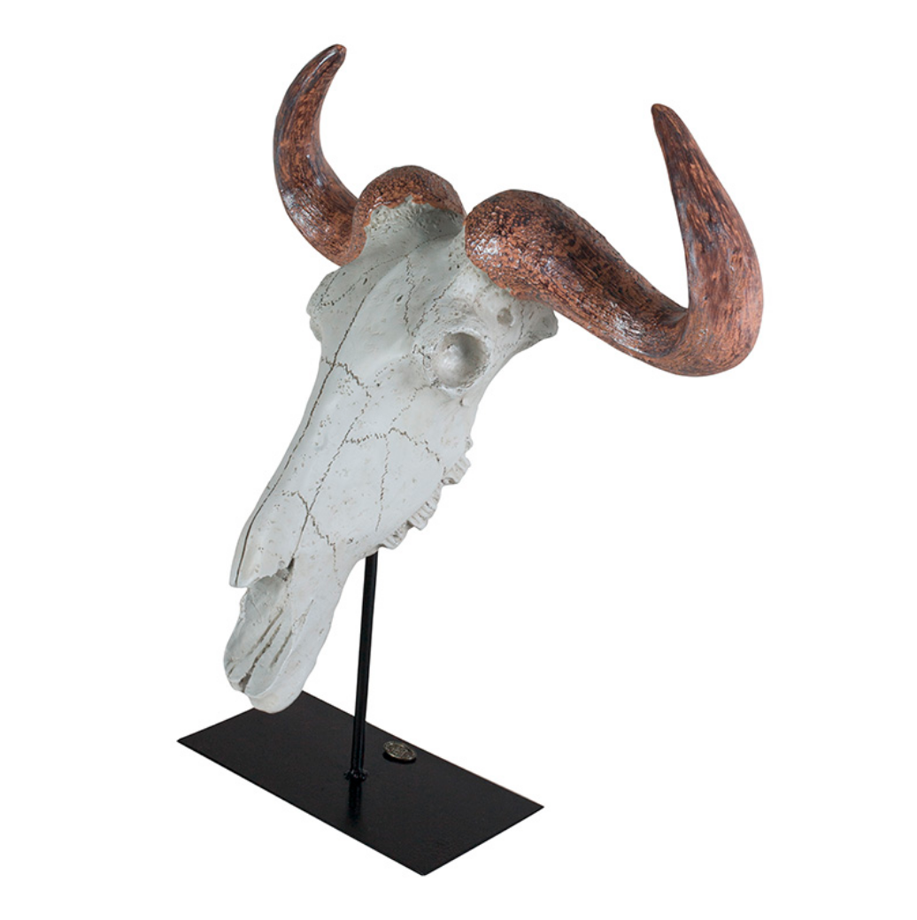 Authentic Models Buffalo Skull - Talisman Collection Fine Jewelers