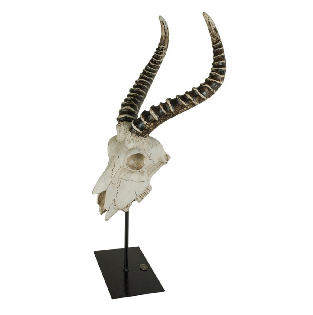 Authentic Models Antelope Skull - Talisman Collection Fine Jewelers