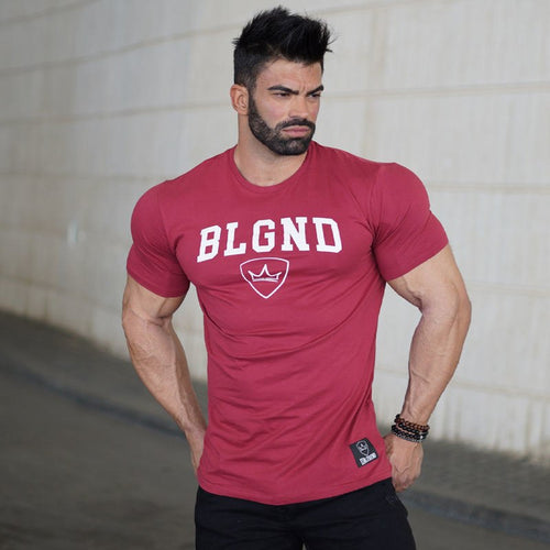 Men's Shirt Summer - Training Workout Fitness - Bodybuilding Shirts Slim Fit - Fashion Casual Men's Cotton Brand