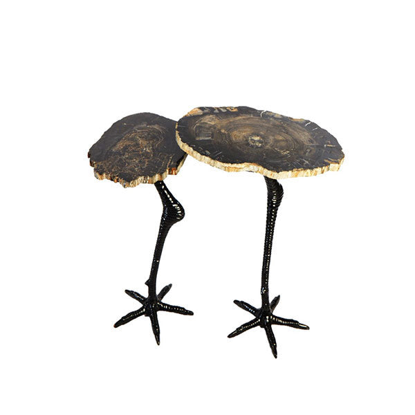 Petrified Wood Table w/Ostrich legs