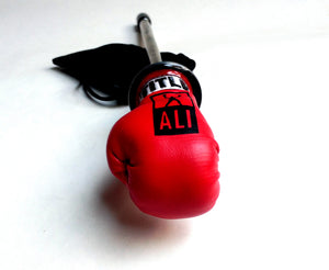 BOXING GLOVE - ALI SHOOTER