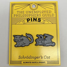 Load image into Gallery viewer, Schrödinger's Cat Pins