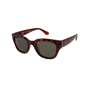 Jase New York Delano Sunglasses in Havana-Jase New York-Mercantile Americana