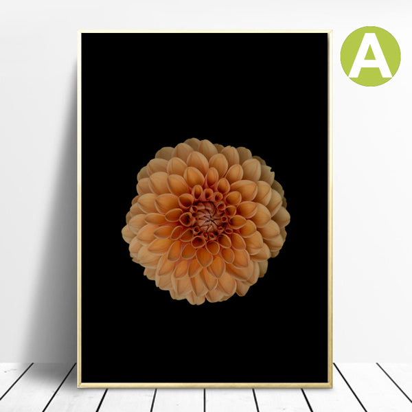 Black and white Wall Art Canvas Print of Flower