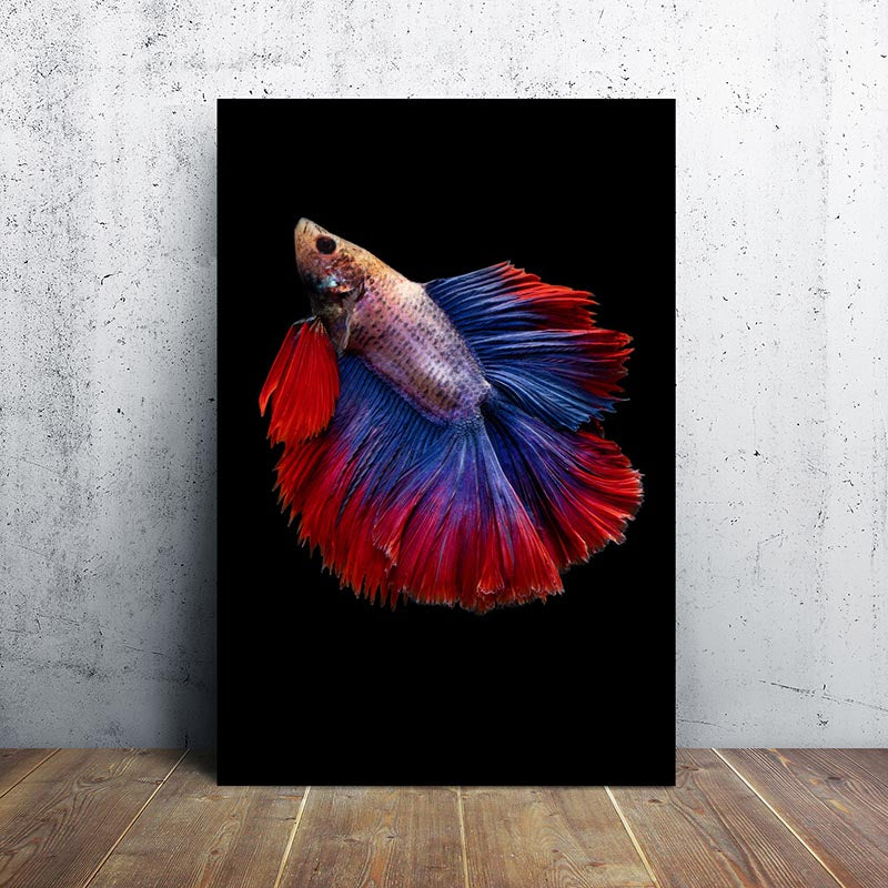 No Frame Fish Seahorse Canvas Painting