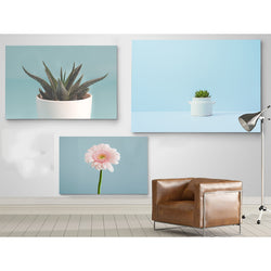 Modern-Canvas-Painting-Prints-Blue-Background-Flower-Wall-Art-Poster