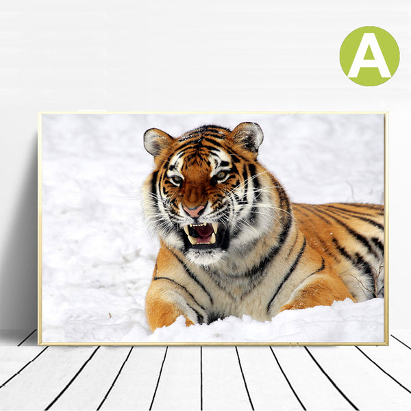 Amur-Tiger-Animals-King-Art-Canvas-Print-Wall-Poster-for-Home-Decor