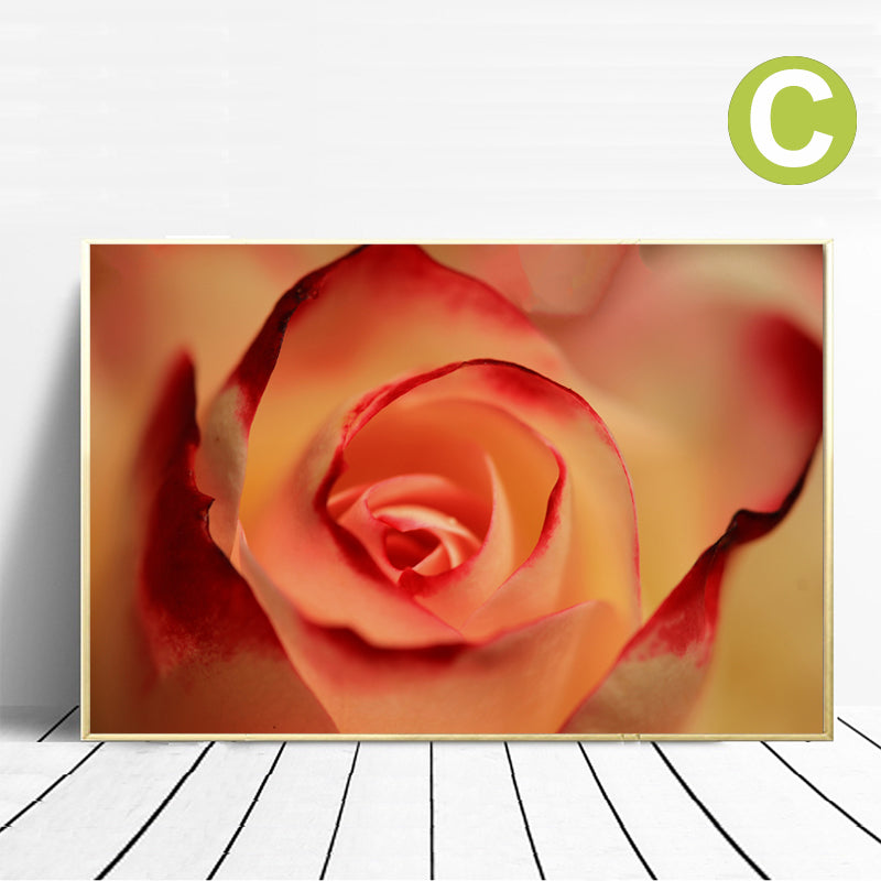 Pink-Rose-Dahlia-Blossom-Wall-Art-Picture-Canvas-for-Living-Room-Decor