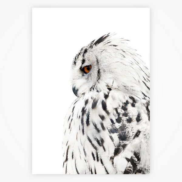 White Owl Painting, Snow Mountain Canvas, Black and white art Prints