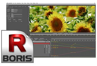 Boris RED 5.5 & Continuum Complete AVX 9 for Avid Editors