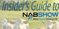 The Insider's Guide to NAB