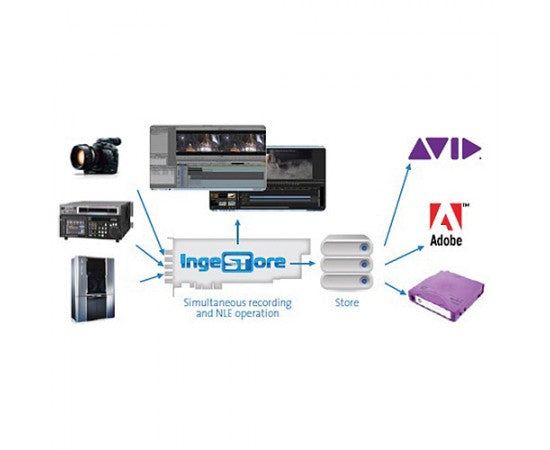 Post Production Studio Reduces Ingest Time with Bluefish444 ingeSTore Software
