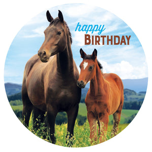 Horse & Pony Edible Cake Image | Horse Party Theme & Supplies