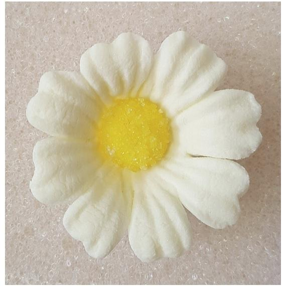 Icing Daisy 40mm Edible Decoration - Ivory