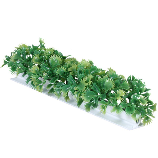 Luxury Parsley Garnish White Base 6/Box