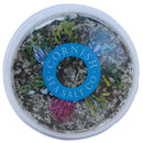 Cornish Sea Salt - Savoury Umami - 60g