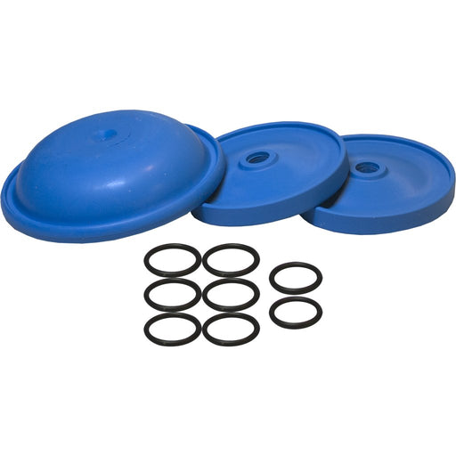 AR 252 Diaphragm Kit - BlueFlex