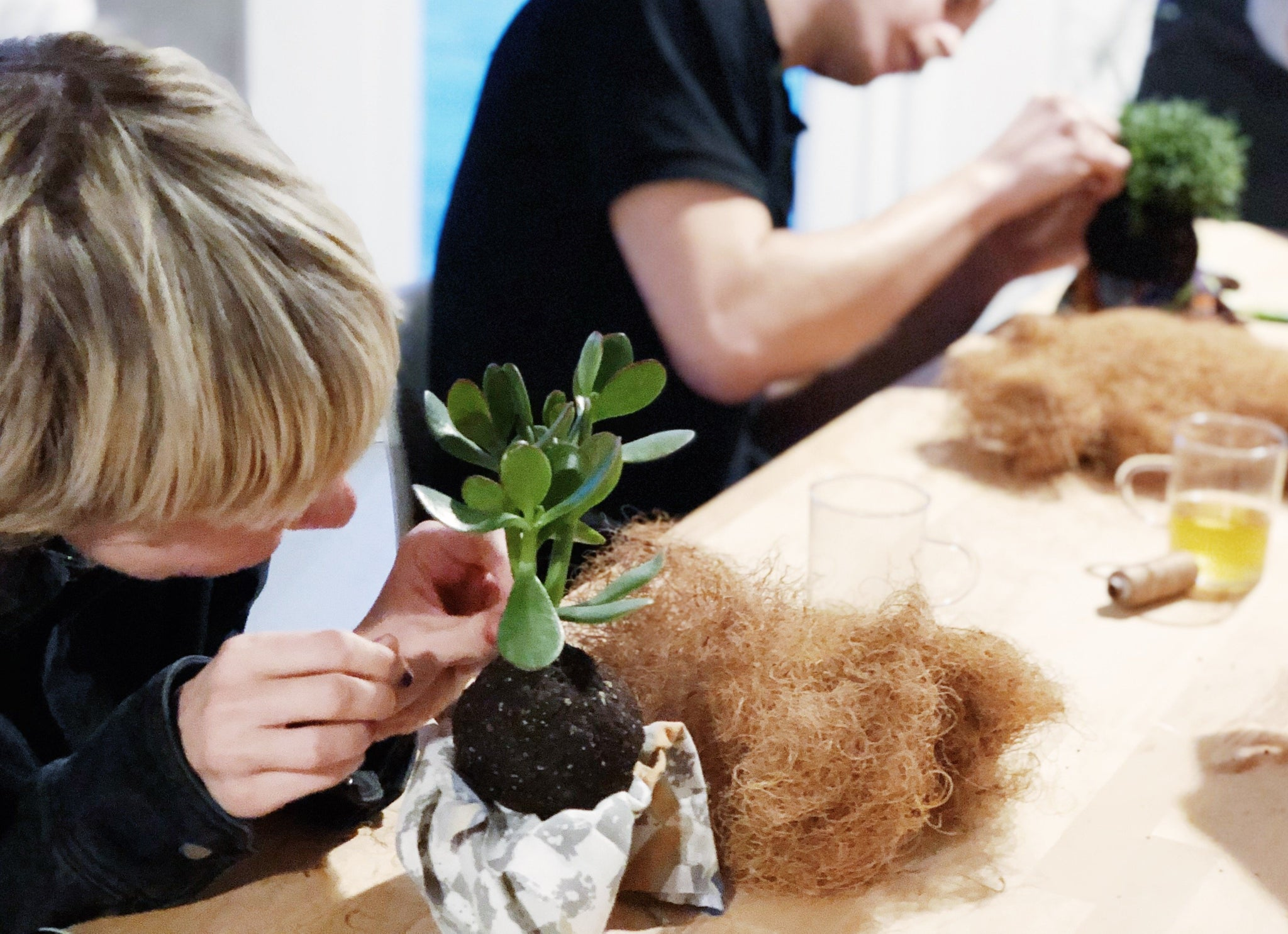 Virtueller Kokedama Workshop (inkl. Material)