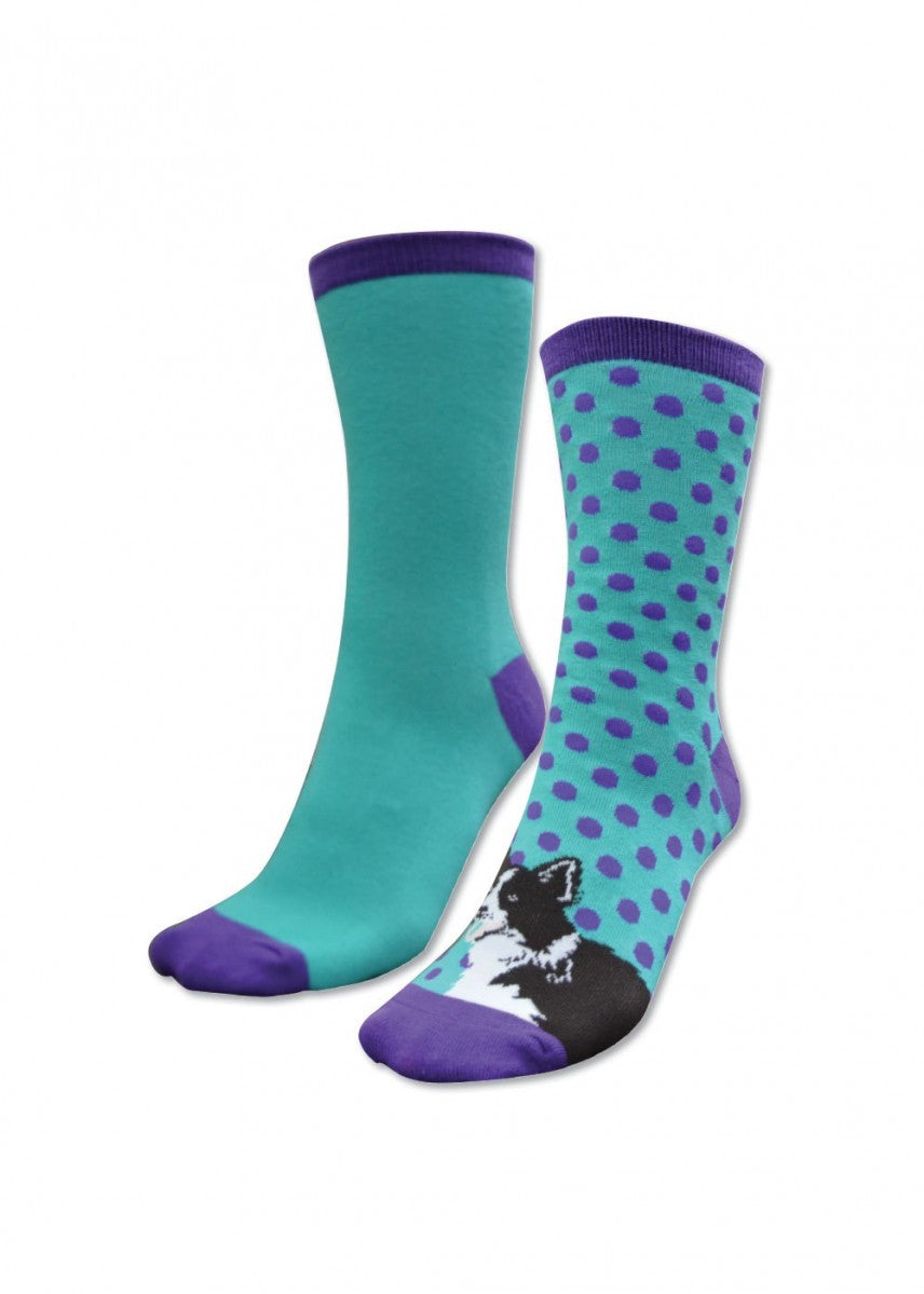 Thomas Cook | Kids | Socks | Homestead Twin Pack | Purple & Turquoise