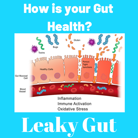 How is your Gut Health?