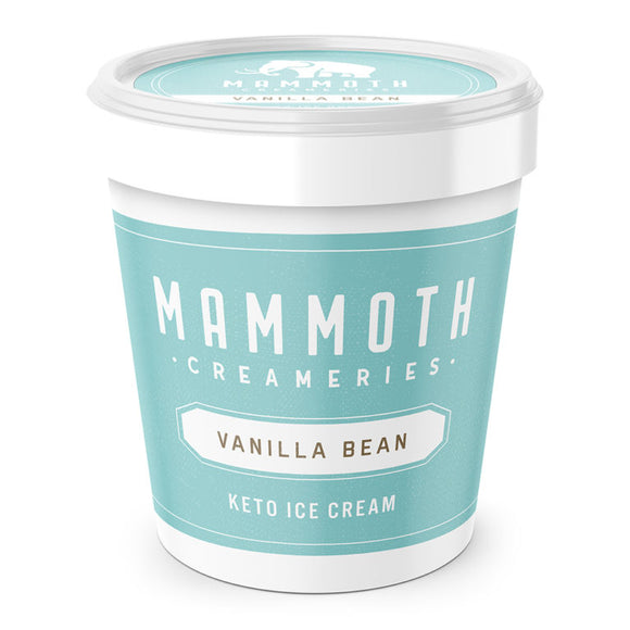 Keto Vanilla Bean Ice Cream