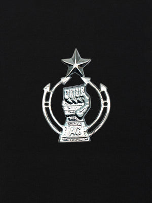 Beret Cap Badge The Armoured Corps