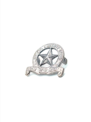 Beret Cap Badge Defence Security Corps