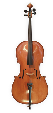 Anton Riegel cello 1/8 - 4/4