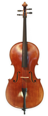 Anton Riegel Superior Cello Outfit