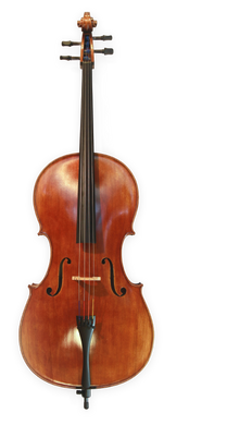 Anton Riegel Superior Cello