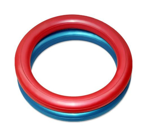 fit ball bases - blue and red