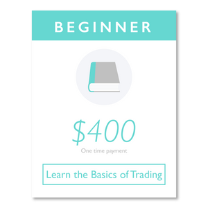 Beginner Trading Course
