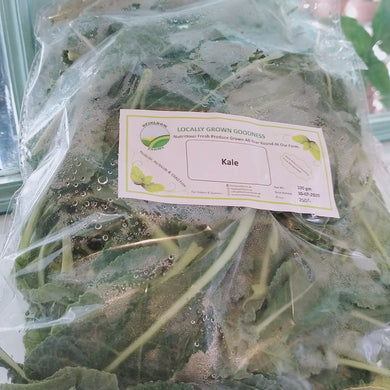 Heirloom Baby Kale 50g - TAYYIB - Heirloom - Lahore