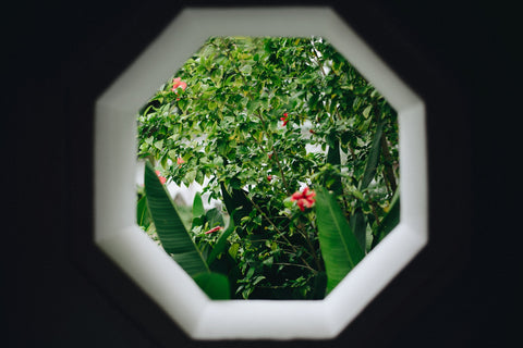 octagon frame in wall showing green garden