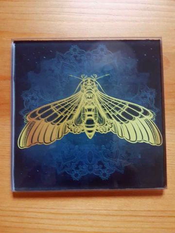 Moth glass coasters - SocialPariah