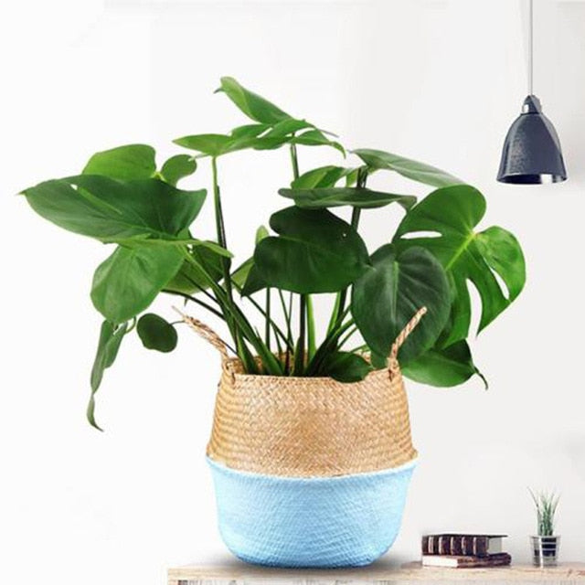 Blue Rattan Basket Planter