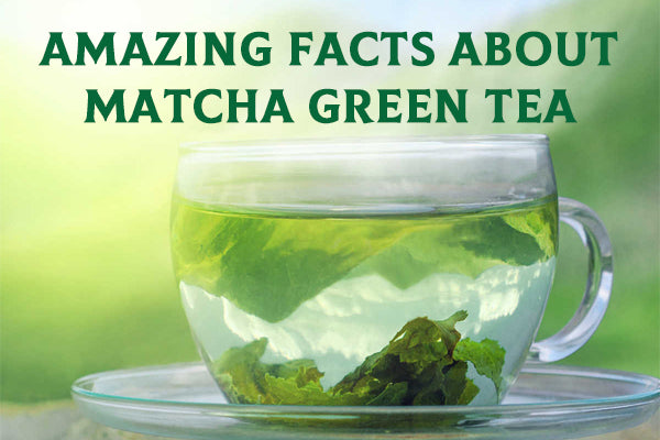Amazing Facts of Matcha Green Tea