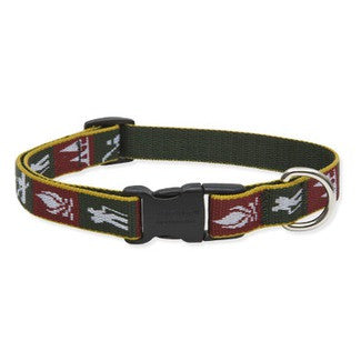 Lupine Trail Mix Dog Collar 3/4""