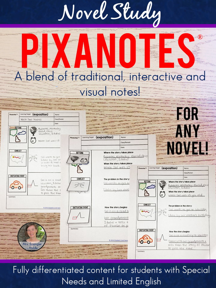 Novel Study Pixanotes® ~ for ANY Novel!