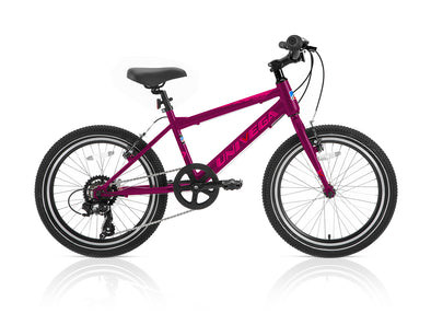 20 inch girl's Rover Trax20 - pink