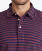 Wrinkle-Free Polo - FINAL SALE Zoom