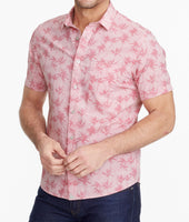 Classic Cotton Short-Sleeve Moldavia Shirt 1