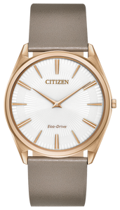 Citizen Stiletto Watch AR3074-54E