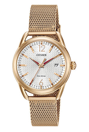 Citizen LTR (Long Term Relationship) Watch FE6083-72A