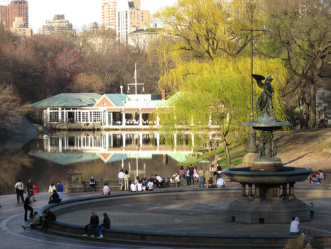 Best Places to Get Married in Central Park | Barbara Michelle Jacobs