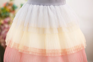 Tulle Rainbow Skirt - EllMii Boutique