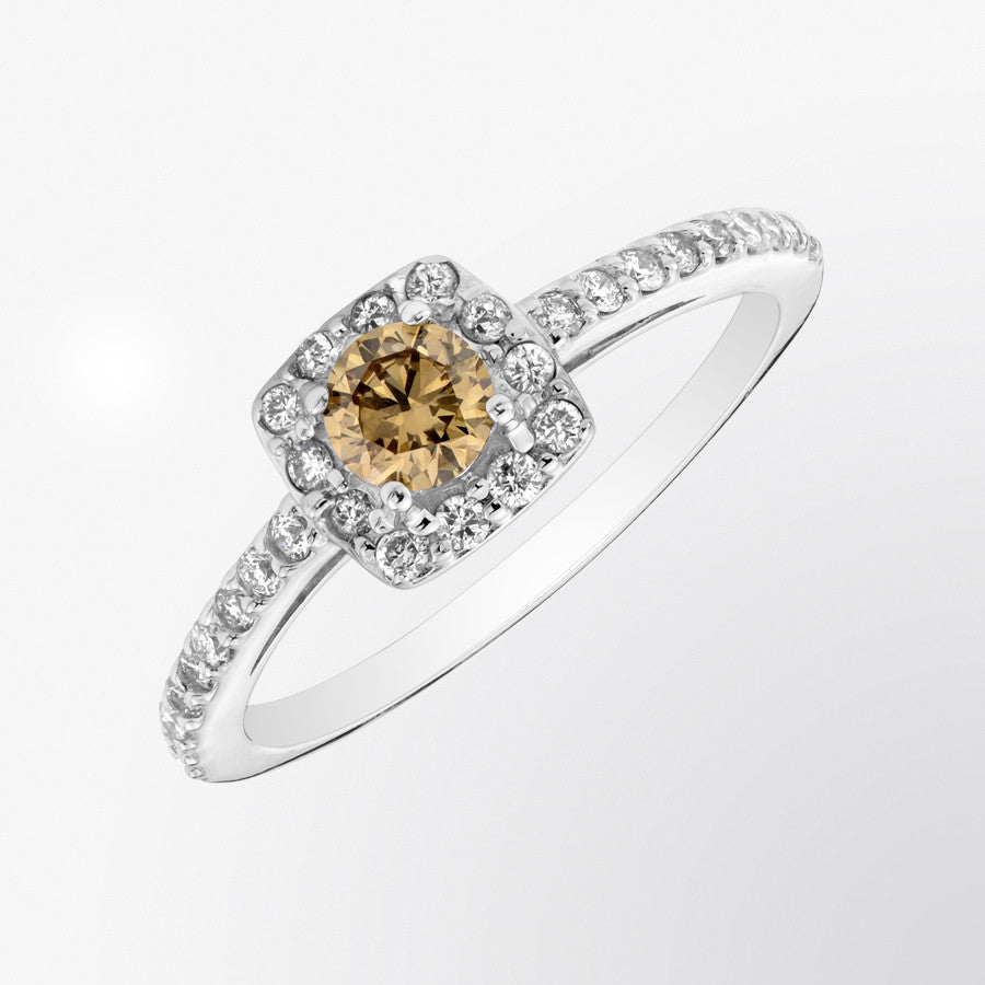 Classique Brown Diamond and Diamond Ring