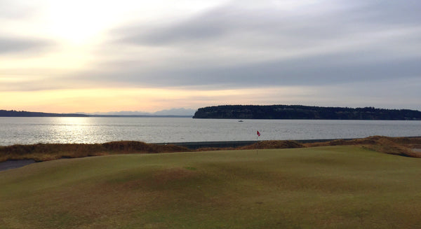 17th Green at Chambers Bay during the 2015 US Open