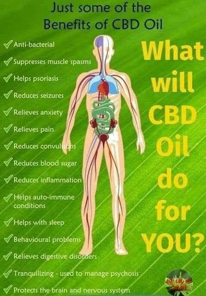 How Does CBD Work on Our Skin?